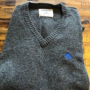 Men's express lambs wool v-neck sweater